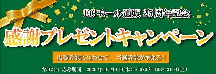 ECモールプレゼントキャンペーン
